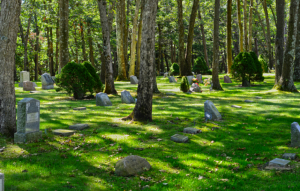 Burial Plot Selection